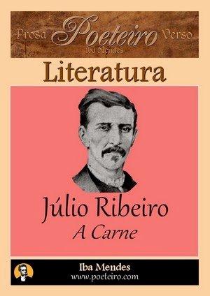 Resumo A Carne - Júlio Ribeiro
